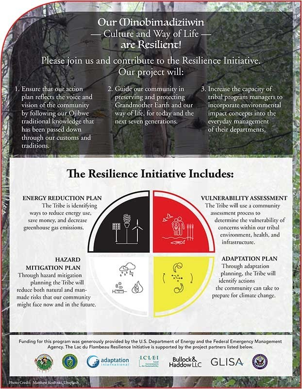 LDF Resilience Initiative 2
